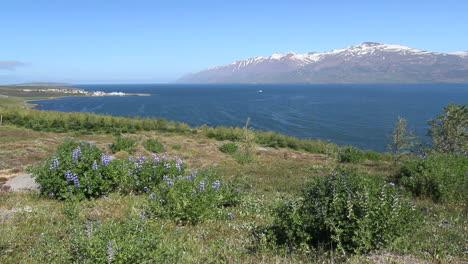 Iceland-Eyjafjordur-&-Hauganes-village-c