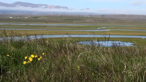 Islandia-Río-Heraosvoln-Con-Hierba-Soplando-C