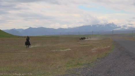 Iceland-Horses-galloping