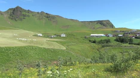 Iceland-near-Vik-1