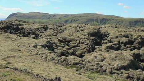 Iceland-south-moss-on-lava