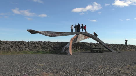 Islandia-Skeftafell-Np-Puente-Piezas