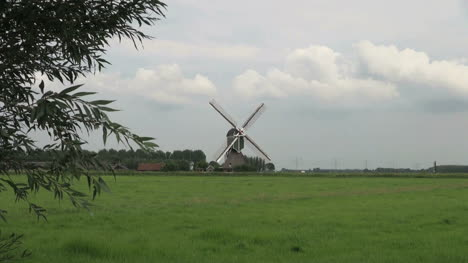 Netherlands-lush-grass-and-windmill-zoom-in