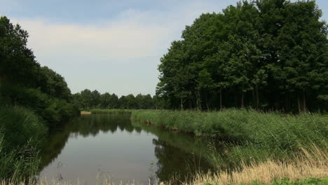 Netherlands-still-water-reflects-sky-and-trees