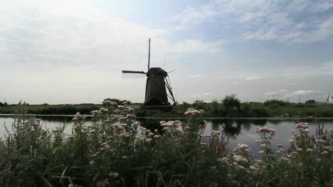 Netherlands-Kinderdijk-windmill-behind-flowers-and-still-water-1