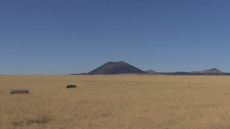 New-Mexico-zooms-to-Capulin