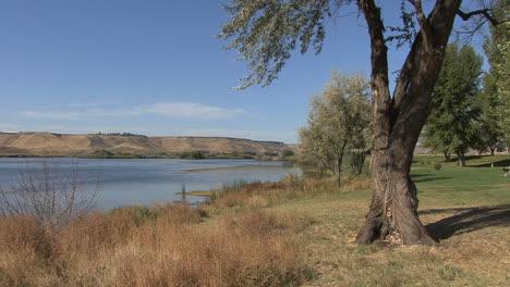 Idaho-Snake-River-man-walks-dog