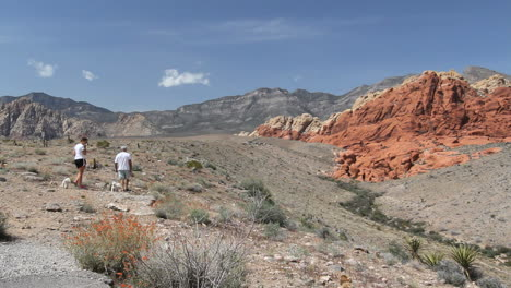 Nevada-view-in-Red-Rock-Canyon