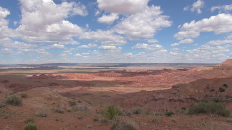 Arizona-landscape