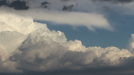 Detail-of-the-top-of-a-thunderhead