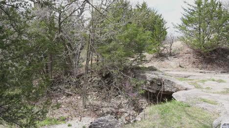 Kansas-Alcove-Spring-c1