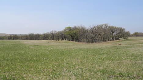 Kansas-rural-landscape-c1