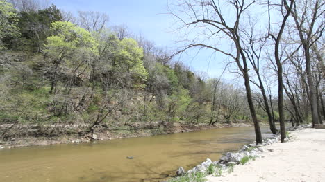 Iowa-Trees-on-bank-of-stream-in-spring-c