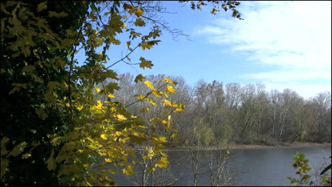 Pennsylvania-Fall-leaves-and-the-Delaware-River-4k