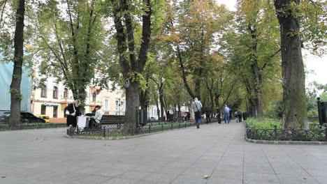 Ukraine-Odessa-shady-walk-c