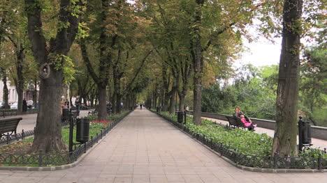 Ukraine-65-Odessa-shady-walk-cx