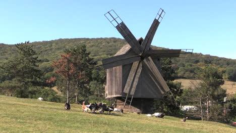 Romania-windmill-and-turkeys-cx