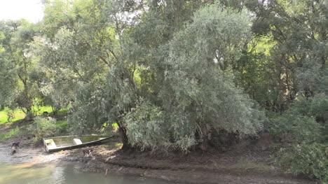 Romania-Danube-delta-dogs-on-bank-cx