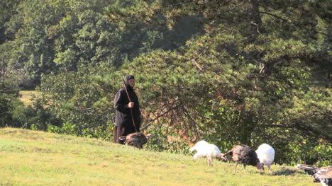 Romania-nun-tending-turkeys-cx-3