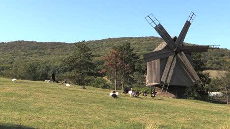 Romania-windmill-and-woman-with-turkeys-cx