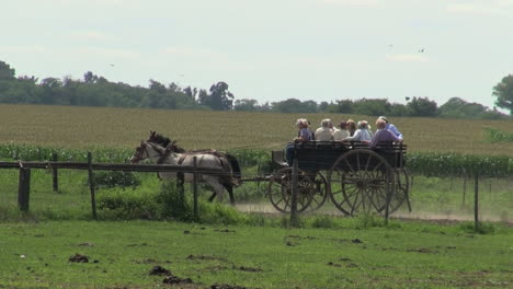 Argentine-Estancia-horses-and-wagon