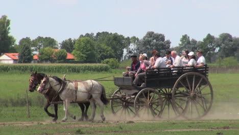 Argentine-Estancia-buggy-ride-editorial