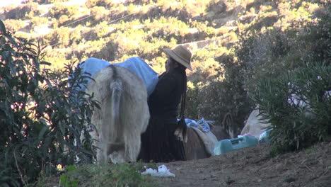 Bolivia-Island-of-Sun-woman-loading-donkey