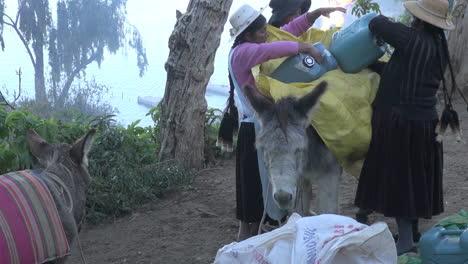 Bolivia-Island-of-Sun-women-and-donkey