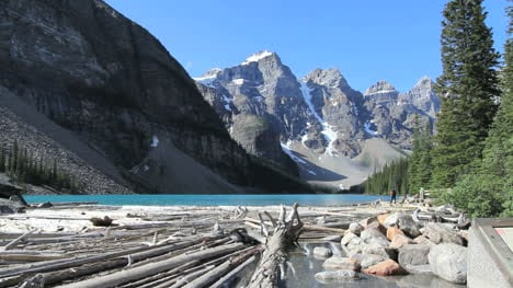Canadian-Rockies-Banff-Moraine-Lake-Trail-with-drift-wood-and-hikers