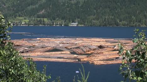 British-Columbia-Adams-Lake-logs