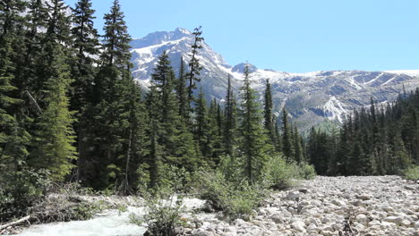 British-Columbia-Glacier-NP-Stream-&-pebble-beach-Columbia-Mountians-c