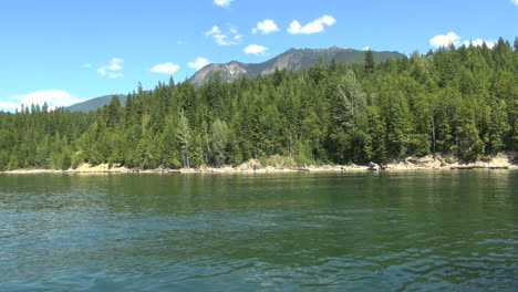 British-Columbia-Lower-Arrow-Lake-forest-on-shore