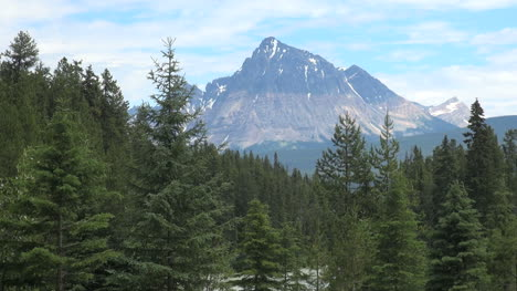 British-Columbia-Mount-Robson-Mt-Fitzwilliam-above-forest