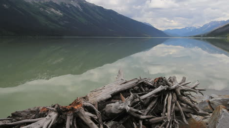 British-Columbia-Moose-Lake-with-driftwood