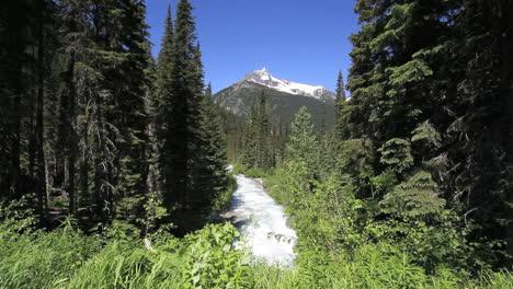 Arroyo-De-Columbia-Británica-En-Las-Montañas-De-Columbia