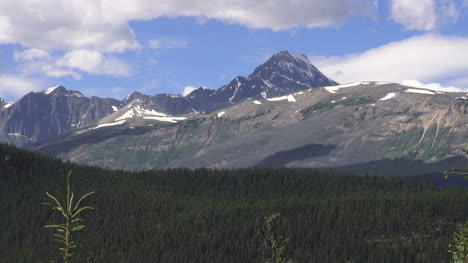 Canada-Icefields-Parkway-mountain-view-and-forest