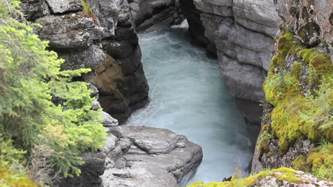 Canada-Jasper-NP-Malign-Canyon-foaming-water
