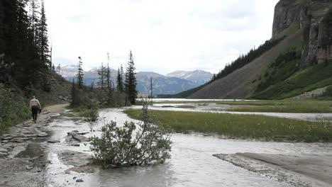 Canadian-Rockies-Banff-Stream-Cerca-Del-Lago-Louise