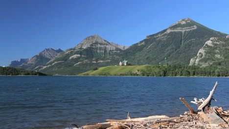 Canada-Lake-with-driftwood-in-Waterton-Lakes-National-Park