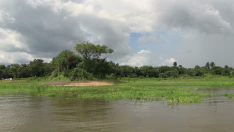 Amazon-January-lake-grassy-margins