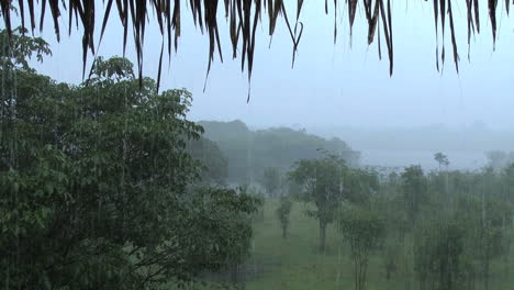 Amazon-rain-misty-view