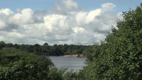 Amazon-view-of-lake-and-forest