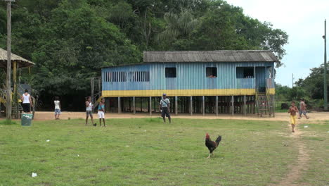 Brazil-Boca-da-Valeria-blue-house-with-chicken