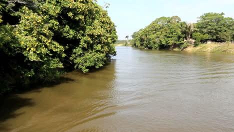 Brazil-Amazon-backwater-canoe-approaching-c