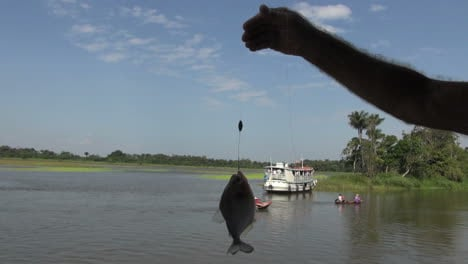 Brazil-Amazon-backwater-near-Santarem-piranha-being-held-up-s