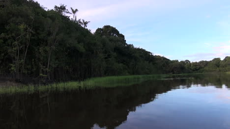 Amazon-grassy-margin-of-lake-under-evening-sky