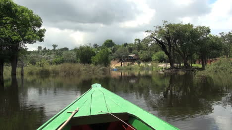 Amazon-trees-in-water-and-house-on-bank