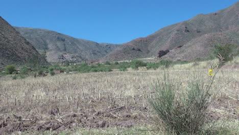 Perú-Colinas-Del-Valle-Sagrado-Y-Tallos-De-Cultivos-En-El-Campo-Cosechado-9