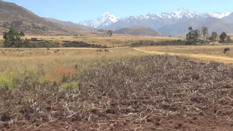 Peru-mountains-behind-dry-pasture-from-moving-car