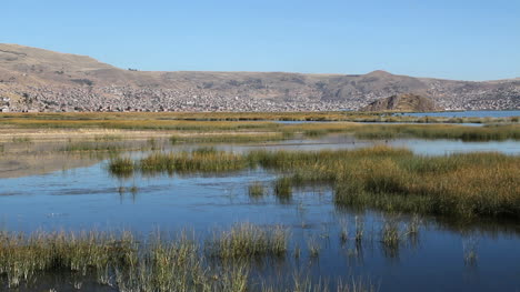 Peru-Lake-Titicaca-tranquil-wetland-and-masses-of-reeds